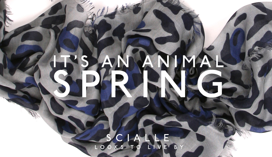 C Spring Shawls